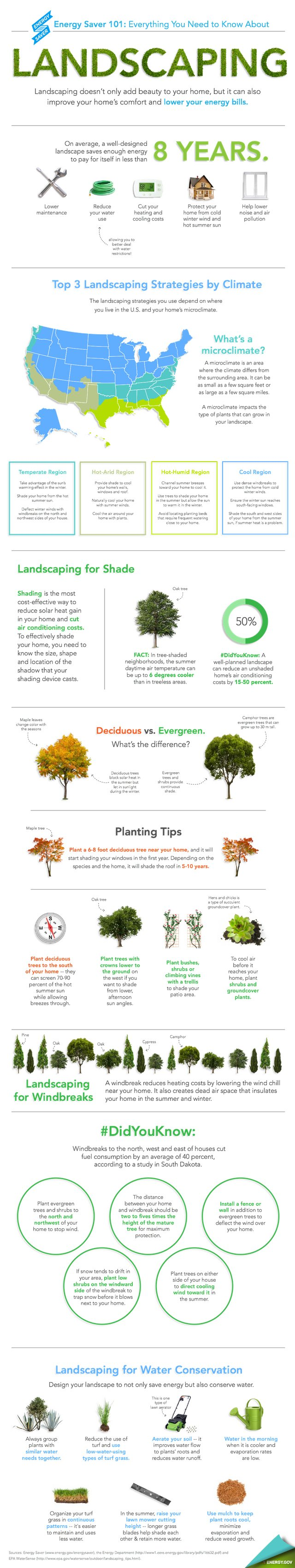 energy saving landscaping